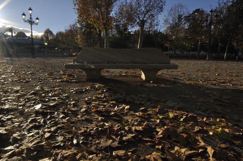 paseo del salon, banco y paisaje otoño
