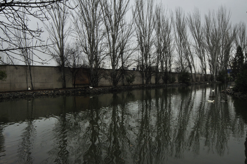 parque garcia loeca, estanque 5