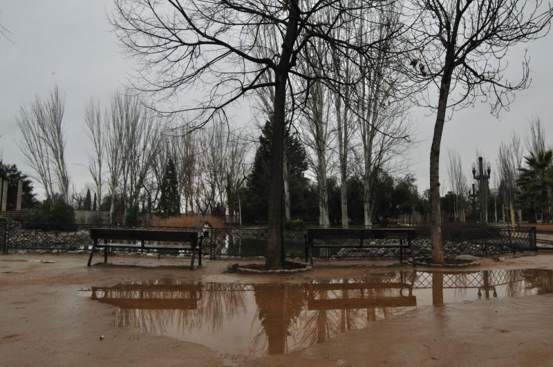 parque gracia lorca, charco junto al estanque