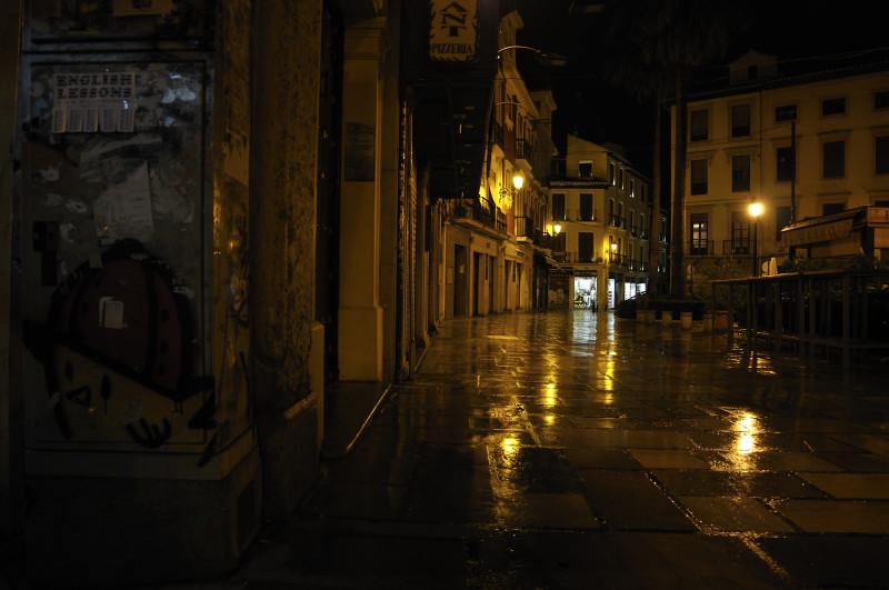 romanilla nocturna 2
