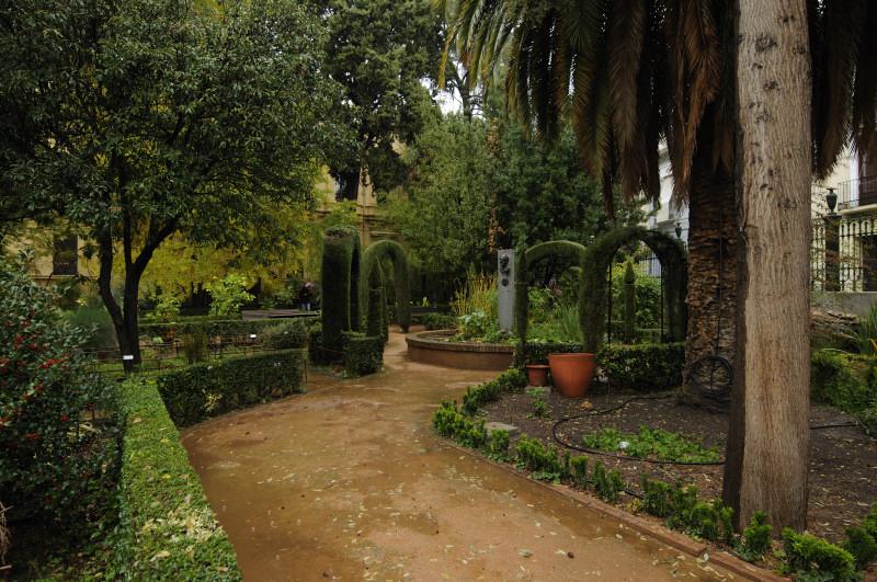 categor as jardin botanico besarse en granada