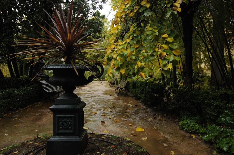 Categor as jardin botanico besarse en granada for Jardin botanico 2016